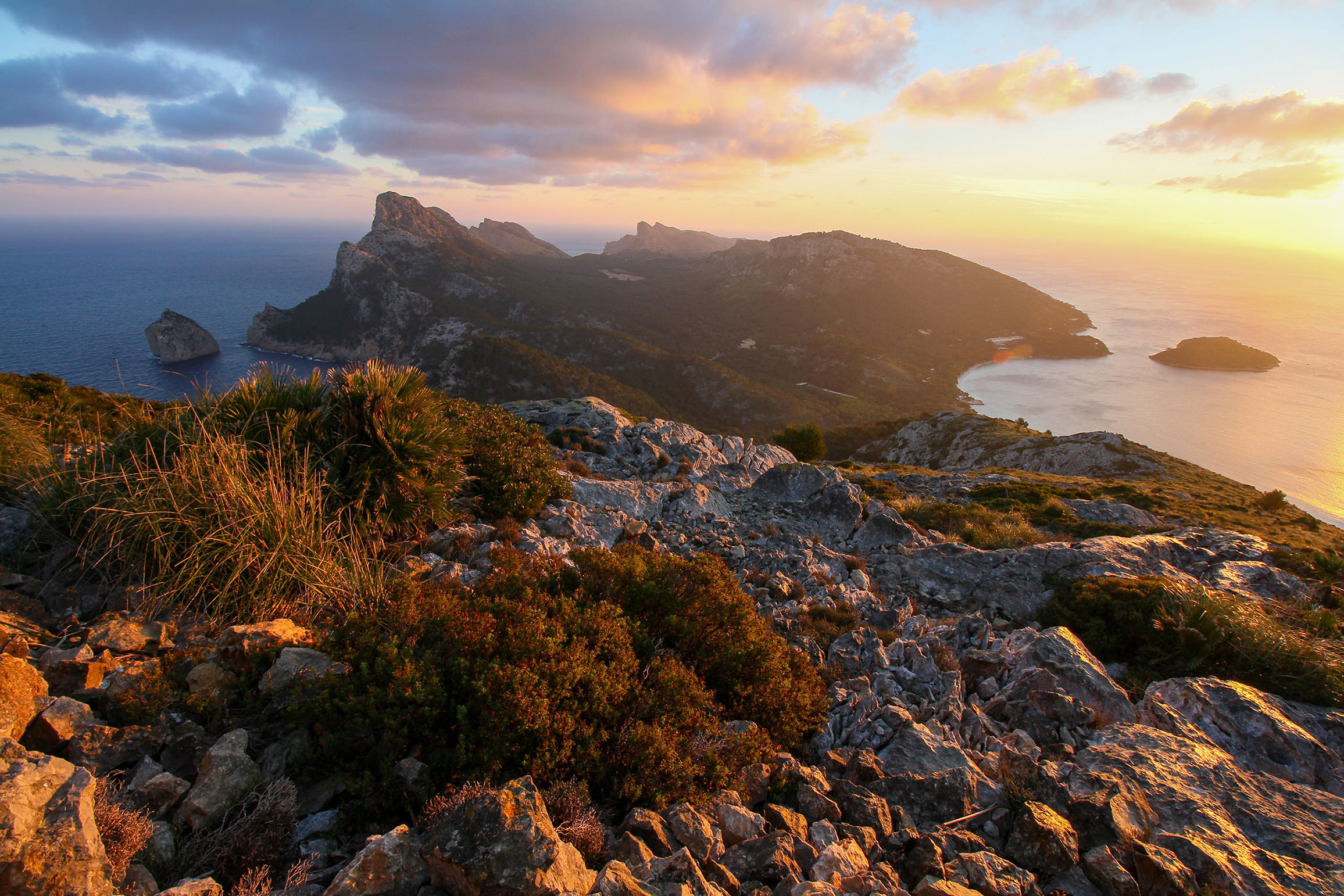 Properties for sale in the north of Mallorca